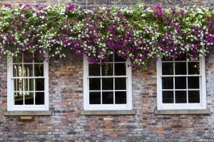 window_traditional_sash